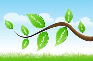resized leaves on tree_id-10042000