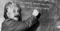 Albert Einstein SROI image