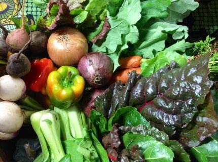 food security photo