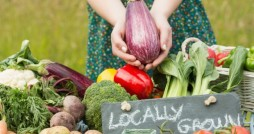 VegetablesGarden_Fotolia_1020-620x350