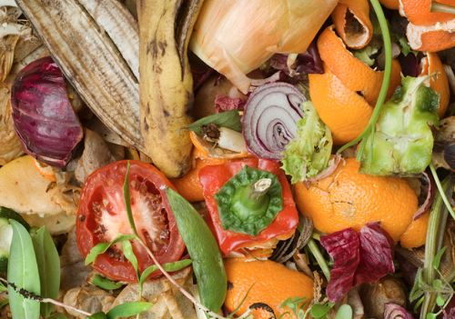 To Tackle Climate Change We Need to Rethink Our Food System