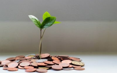 How to Crowdfund Your Green Business