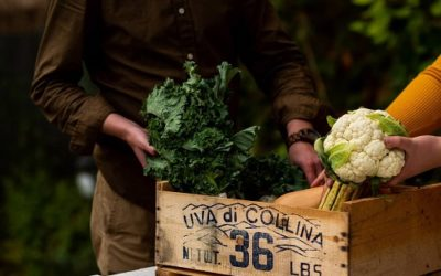 We Are What We Eat: How these social ventures embraced farm to table during the pandemic